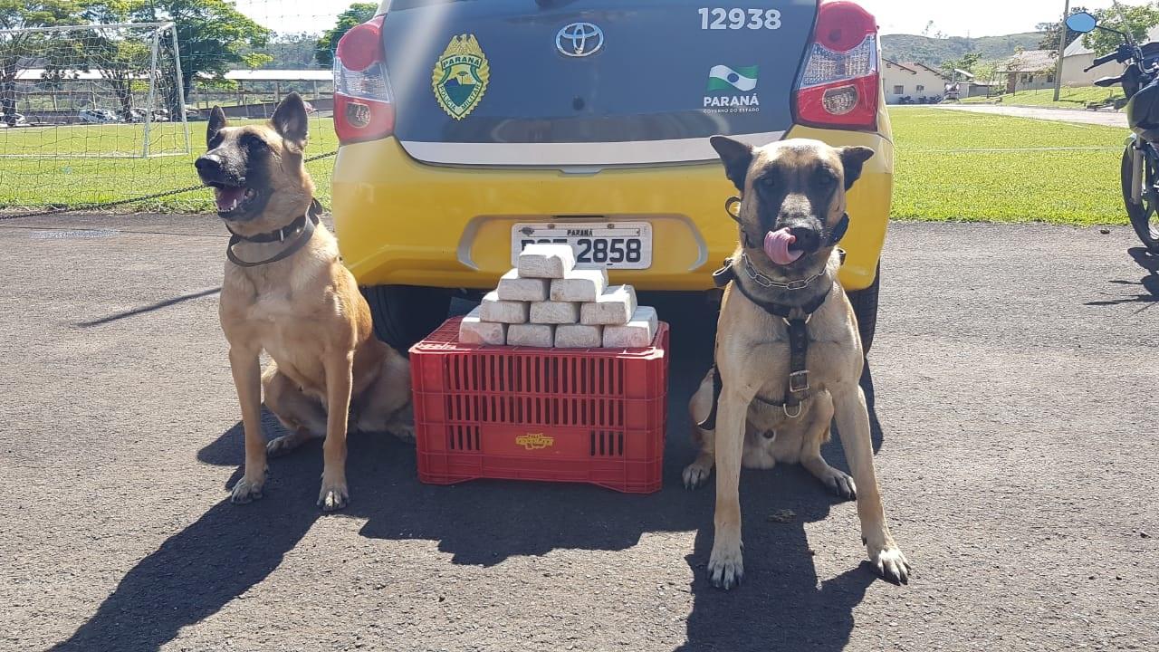 Polícia Militar realiza grande apreensão de drogas em Jacarezinho