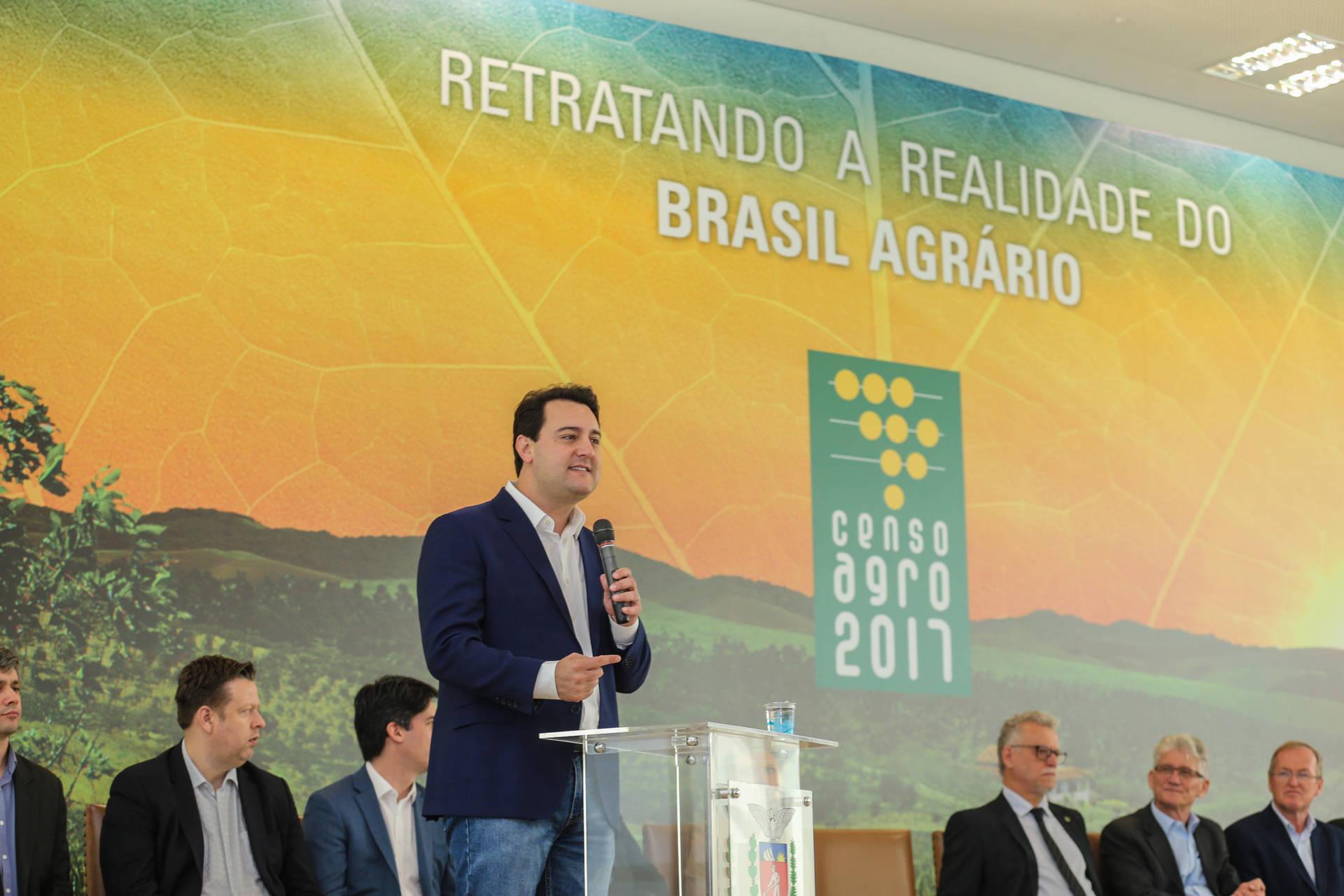 Agronegócio do Paraná mantém ritmo de crescimento, segundo Censo